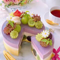 レアチーズケーキ/チーズケーキ/シャインマスカット/ピオーネ/秋の味覚/手作りお菓子/... 🍇贅沢ぶどうのレアチーズケーキ  ピオー…