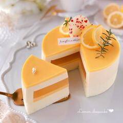 cheesecake/cake/sweets/LEMON/Cafe/萌え断/... 🍋レモンチーズケーキ  レモンカードがた…