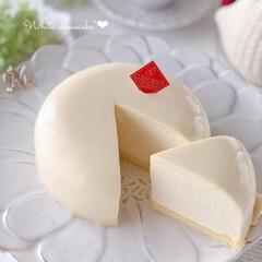 cheesecake/White/cake/Cafe/sweets/手作りおやつ/... 🤍ホワイトチーズケーキ  シンプルにホワ…