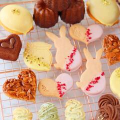 カヌレ/レモンケーキ/フィナンシェ/クッキー/焼菓子/焼き菓子/... 焼き菓子いろいろ🐇💕(1枚目)