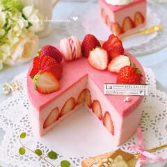 """いちご大好き/手作りおやつ/手作りスイーツ/いちごスイーツ/いちごケーキ/ムース/... 前に作った""""ホワイトチーズムースケーキ""""…"""
