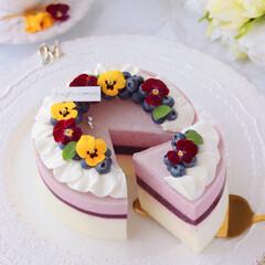 cheesecake/レアチーズケーキ/チーズケーキ/お菓子作り/ムースケーキ/ムース/... ブルーベリームースケーキ  お花のリー…(3枚目)