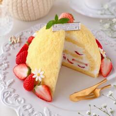 STRAWBERRY/Cafe/cake/sweets/いちごケーキ/手作りデザート/... 🌼ミモザケーキ  今日3月8日はミモザの…(3枚目)