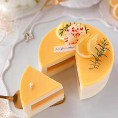 cheesecake/cake/sweets/LEMON/Cafe/萌え断/... 🍋レモンチーズケーキ  レモンカードがた…(2枚目)