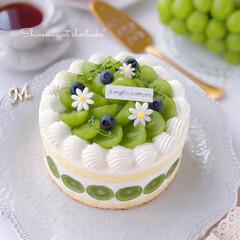 cake/Cafe/sweets/萌え断/手作りデザート/手作りおやつ/... シャインマスカットのショートケーキ  フ…
