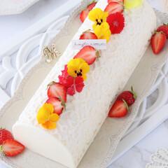 レモン/手作りデザート/手作りお菓子/手作りスイーツ/手作りおやつ/手作りケーキ/... 🍋レモンチーズケーキ  赤×黄のエディブ…(2枚目)