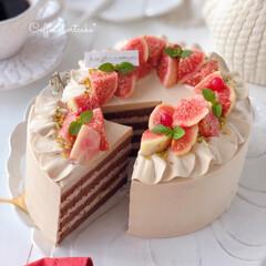 Coffee/cake/Cafe/sweets/手作りおやつ/手作りデザート/... ☕️コーヒーショートケーキ  ココアジェ…