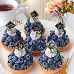 cake/Cafe/sweets/手作りおやつ/手作りスイーツ/手作りデザート/... 💜ブルーベリータルト  カスタード&ブル…