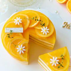 チーズケーキ/柑橘/オレンジゼリー/手作りおやつ/手作りケーキ/手作りスイーツ/... 🍊しましまオレンジ🧡チーズムースケーキ …(3枚目)
