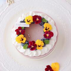 cheesecake/レアチーズケーキ/チーズケーキ/お菓子作り/ムースケーキ/ムース/... ブルーベリームースケーキ  お花のリー…(2枚目)