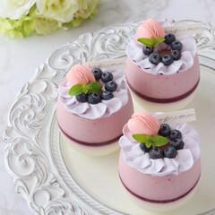 Cafe/blueberry/sweets/手作りデザート/手作りおやつ/手作りスイーツ/... ブルーベリームース  ブルーベリームー…(1枚目)