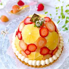 お菓子作り/柑橘系/ドームケーキ/タルト/いちごタルト/いちごスイーツ/... 🍋小夏と🍓いちごのドームタルト  小夏が…