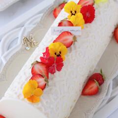 レモン/手作りデザート/手作りお菓子/手作りスイーツ/手作りおやつ/手作りケーキ/... 🍋レモンチーズケーキ  赤×黄のエディブ…(3枚目)