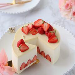 Cafe/sweets/STRAWBERRY/cake/手作りデザート/手作りスイーツ/... 🍓ホワイトチーズムースケーキ  ホワイト…(2枚目)