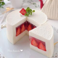 cake/cheesecake/STRAWBERRY/Cafe/sweets/手作りデザート/... 🍓レアチーズケーキ  時季は過ぎちゃった…