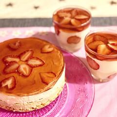 home made/スイーツ/いちごゼリー/レアチーズケーキ/手作りお菓子/お菓子/... レアチーズケーキいちごゼリー🍓
