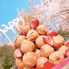 hbd/誕生日ケーキ/誕生日/たこ焼き器/お花見/HM/... お花見で友達がの誕生日をお祝い🎂