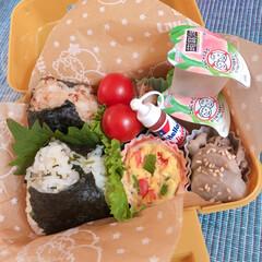 蒟蒻畑 白桃味 / 蒟蒻畑(ダイエット食品)を使ったクチコミ「おにぎり弁当🍙」