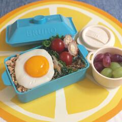 lunch/豆腐そぼろ/ビビンバ弁当/ビビンバ/ブルーノランチボックス/フォロー大歓迎/... 豆腐のそぼろでビビンバ弁当🥢