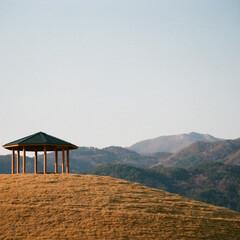 旅行/山/長野/古墳/丘/斜光/... 旅行しているときに撮影した一枚です。丘の…