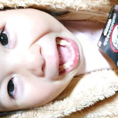 ちまちま作業/笑顔/リメイク/孫と/ケチ/ゴミ?/... 🍀うちの 熊ちゃん🍀  帰って来たので😂…(3枚目)