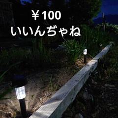 DAISO/暮らし/庭/庭のある暮らし/ガーデンライト 🍀ライトアップ🍀  先日のDAISO❤️…