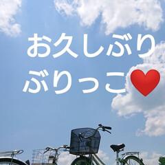 心配かけてごめんなさい✨/集大成/甲子園への道/合宿/野球部/野球/... 🍀ひょっこり犯👀ちらり🍀  お久しぶりで…(1枚目)