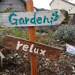 ちまちま/DIY/ガーデン雑貨/ガーデニング/暮らし/花のある暮らし 🍀ビタミンカラーで元気を🍀  まだまだ元…(2枚目)