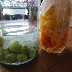 梅酒/オレンジ&レモン/梅雨季節/梅雨入り/梅雨/暮らし/... 🍀季節🍀  今日やっと 梅酒仕込みました…