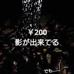 DAISO/暮らし/庭/庭のある暮らし/ガーデンライト 🍀ライトアップ🍀  先日のDAISO❤️…(3枚目)