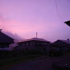 眠い/朝焼け/暮らし 🍀朝焼け🍀  今日は ピンクでした  今…
