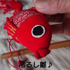 🍓グッチせんせありがとう❤️/金魚/やる気スイッチ/東北の冬/吊るし雛 🍀吊るし雛🍀  宝の持ち腐れ⤵️⤵️ 作…
