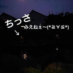 DAISO/暮らし/庭/庭のある暮らし/ガーデンライト 🍀ライトアップ🍀  先日のDAISO❤️…(4枚目)
