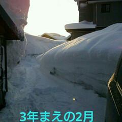 雪国の春/住まい/暮らし 3年まえの スーパー豪雪の時のしゃしん …