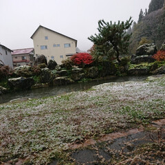 東北/雪国の住まい/雪国/冬到来/冬物語/キラキラ 🍀雪の合間の🍀  今朝、起きたら💦 みぞ…