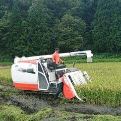 JA/お米/暮らし/秋空/秋風/孫と/... 🍀米 農家さん🍀  始まりました🌾稲刈り…