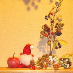 雑貨/植物/木の実/ナチュラル/ドライフラワー/クリスマス/... ♡ツリー ♡木の実  玄関の ちょこっと…