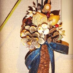 クリスマス/木の実/植物/雑貨/ドライフラワー/クリスマスツリー ♡クリスマス飾り ♡ハンドメイド  開い…