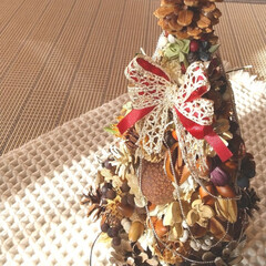 クリスマス/ハンドメイド/木の実/ナチュラル/ドライフラワー/クリスマスツリー ♡木の実ツリー ♡ハンドメイド  陽が当…
