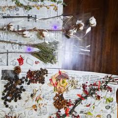 スワッグ/リース/クリスマス/ドライフラワー/花屋/クリスマス2019/... 昨日、今お気に入りのお花屋さんに行ったら…