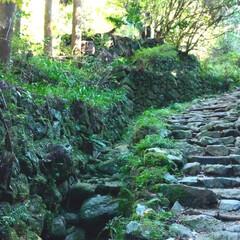 散策/おでかけ お弁当つくって お山のお寺に行ってきまし…