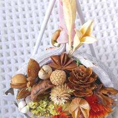 木の実/植物/ブッダナッツ/ハンドメイド/雑貨/ナチュラル ♡ブッダナッツ ♡ハンドメイド   白の…