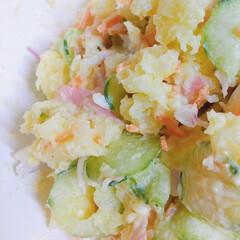 ポテトサラダ/おうちごはん/収穫/じゃがいも/畑 ♡ポテトサラダ  お嫁さんのばぁばが作ら…(1枚目)