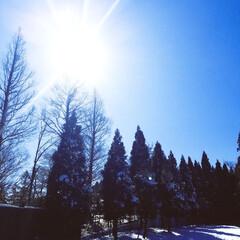 """ドライブ/雪景色/おでかけ/暮らし 昨日、雪景色が見たくて""""比叡山""""に行って…(2枚目)"""