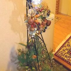 クリスマスツリー/玄関/ハンドメイド/ドライフラワー/マンション玄関 ♡ハンドメイド ♡リース ♡ドライフラワ…(1枚目)