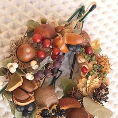 植物/木の実/雑貨/アンティーク/ナチュラル/ドライフラワー ♡木の実 ♡リース  いつも、思いのまま…
