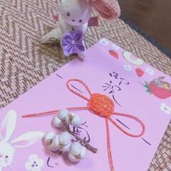 ウサギ/生活の知恵/雑貨/100均/ダイソー ♡お祝い袋 ♡水引  孫っちへのお祝い……