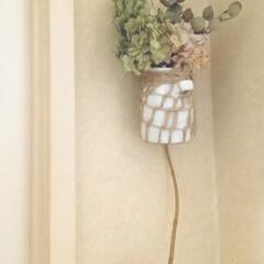 雑貨/インテリア/ハンドメイド/100均/ダイソー/ダイソーアイテム/... おトイレの中のドア横の細長い壁に… 細長…