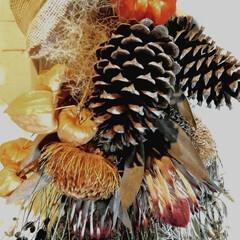 ハロウィン/雑貨/インテリア/ハンドメイド 大きなお飾りには 大きな松ぼっくり…テー…