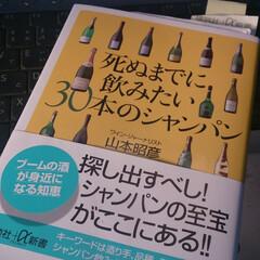 スパークリング/ワイン/シャンパーニュ/なつかしい Champagne&wine 高いものか…
